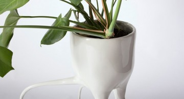 Monstera Plant Pots * By Tim Van De Weerd  Monstera Plant Pots * By Tim Van De Weerd Monstera Plant Pots By Tim Van De Weerd 7 360x195