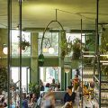 bar botanique Plants and Jungle Obsession * Bar Botanique 1 4 120x120
